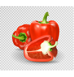 Photo-realistic red paprika whole vector