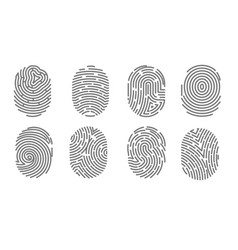 Security access human fingerprint authorization vector