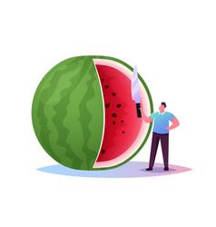 Tiny character enjoy refreshing huge watermelon vector