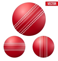 Traditional shiny red cricket ball vector image