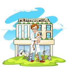 Vet and cats at pet hospital vector