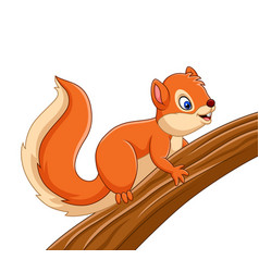 cartoon cute squirrel on the tree vector image