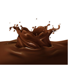 chocolate splash 3d vector image