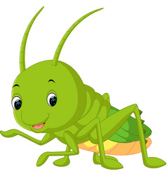 Grasshopper cartoon vector