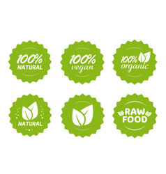 Organic natural vegan and raw food nutrition icon vector