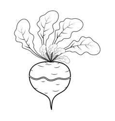 outline turnip cartoon icon design isolated on vector image