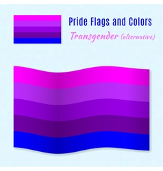Transgender pride flag with correct color scheme vector image