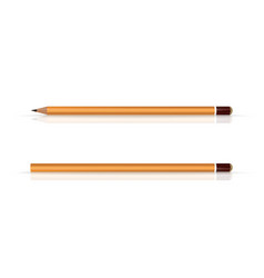 yellow wooden pencils classic yellow pencil vector image