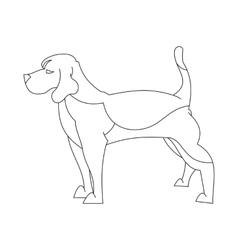 Beagle dog in line vector image