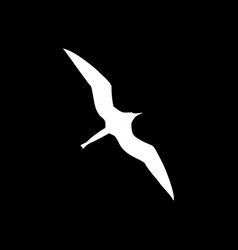 Frigate bird and background vector