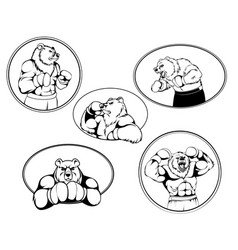 set of boxer bear logos vector image