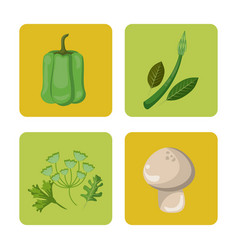 Set vegetables fresh harvest healthy image vector