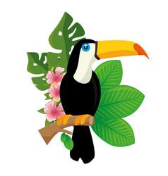 Toucan tropical bird icon vector