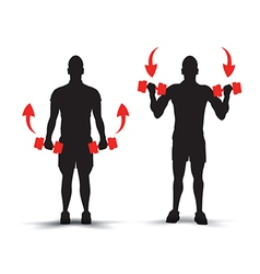 training silhouettes example vector image