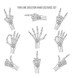 linear skeleton hands gestures vector image