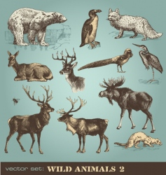 Wild animals set 2 vector