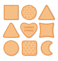 biscuit cookie snacks cookies biscuits for vector image
