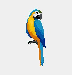 cartoon parrot - pixel vector image