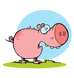 Chubby Pink Pig Snacking On Grass vector