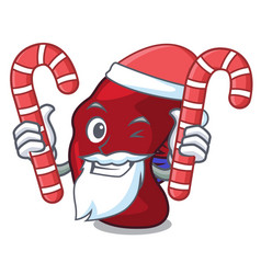 Santa with candy spleen mascot cartoon style vector