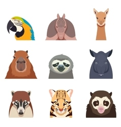 Set south america animals flat icons vector
