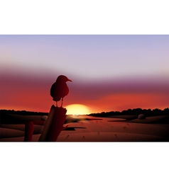 A bird in a sunset view of the desert vector image