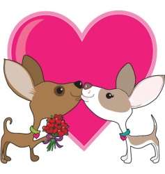 chihuahua love vector image