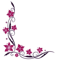 Pink and purple flowers vector image