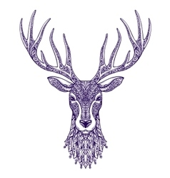Deer head isolated on white background Hand drawn vector