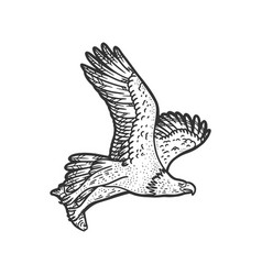 eagle carries fish sketch vector image