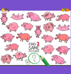 Find two same pigs characters game for kids vector