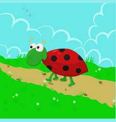 ladybug in the meadow vector image