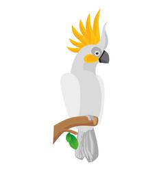 parrot tropical bird icon vector image