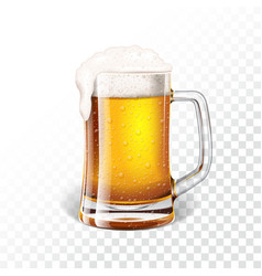 With fresh lager beer in a beer mug vector