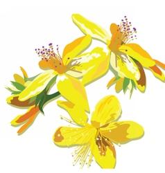 Beautiful watercolor yellow flowers card vector