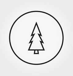 Coniferous forest pine trees forest outline icon vector