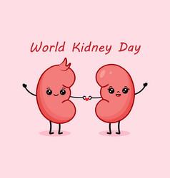 Couple cute cartoon kidney characters vector