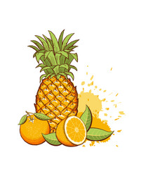 Exotic fruits pineapple oranges color vector