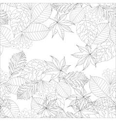 graphic autumn leaves vector image