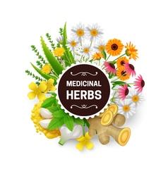 Medicinal Herbs Plants Wreath Flat Frame vector