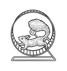 squirrel in wheel sketch vector image