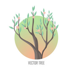 tree with green leaves and pink flowers vector image