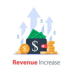 Wallet full money revenue increase high vector