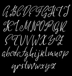 hand drawn elegant calligraphy font modern brush vector image