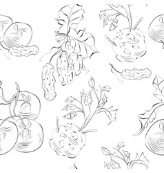 seamless background with vegetable vector image vector image