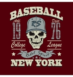 baseball skull t-shirt graphic design vector image vector image