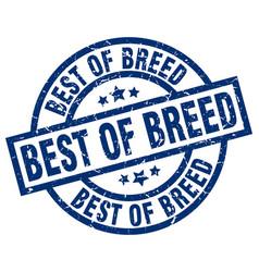 Best of breed blue round grunge stamp vector