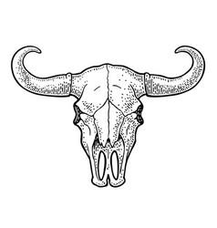 bull skull with horns vintage black vector image