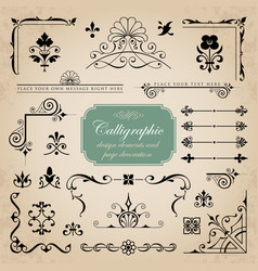 Collection of various calligraphic design elements vector