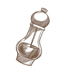 cooking ingredient pepper shaker or grinder vector image